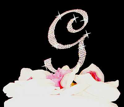 Crystal Initial Completey Covered Cake Topper